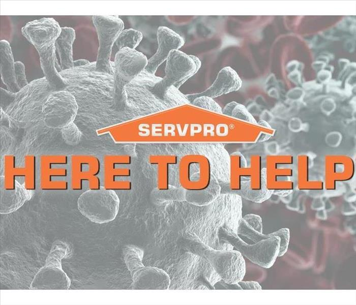 "SERVPRO Bacteria logo with ""Here to Help"" Slogan"